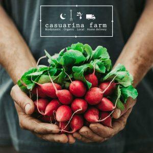 CASUARINA-FARM