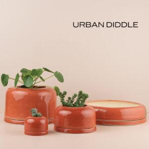 Urban Diddle
